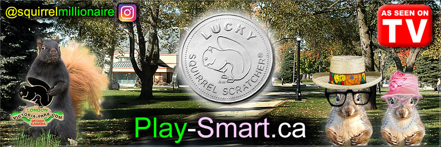 Play-Smart.ca - You can BUY This Domain Name or purchase some of our Lucky Lottery Charm® products